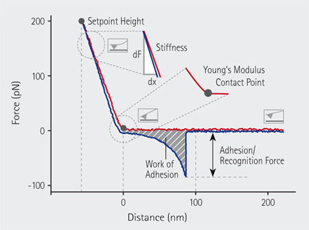 In QI™ mode a complete force-distance curve is recorded at each pixel.
